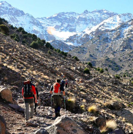 Trek To North Africa