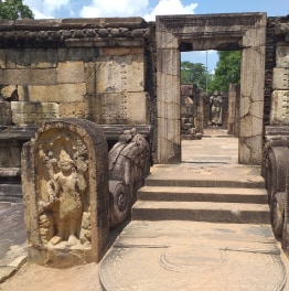 6 Day Sightseeing Tour of Sri Lanka