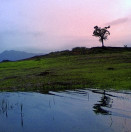 Take scenic captures of Kerala hills & Backwaters