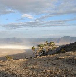 2-Day Lake Manyara & Ngorongoro Safari Tour from Arusha