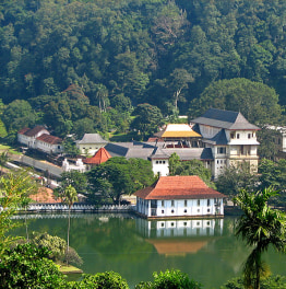 Embark on a beautiful journey through Sri Lanka
