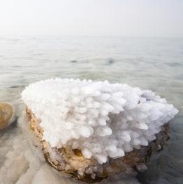 Come Alive to Dead Sea & Masada