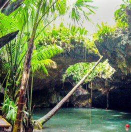 5-Hour Jeep Safari Tour of Cozumel with Snorkelling