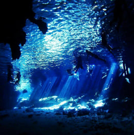 Rejoice in the flooded Dos Ojos Cenote