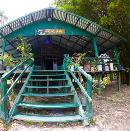 Boat Away to Unmask the Hidden Treasures of Amazon
