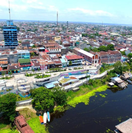 Full day tour of history and wildlife of Iquitos