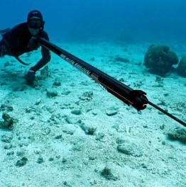 5-Hour Underwater Spearfishing & Snorkelling Tour in Cancun