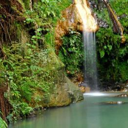Spend an entire day at Sete-Cidades & Lagoa do Fogo