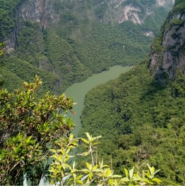 9-Hours Nature Tour at Sumidero Canyon from San Cristobal de las Casas