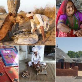 Visit a Popular Bishnoi Village in Rajasthan