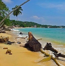 Fulfill all Your Travel Wishes in Sri Lanka