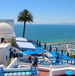 Tunis Medina, Bardo Museum, Carthage & Sidi Bou Said Day Tour