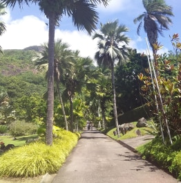 Revel in the Majestic Island of Mahe