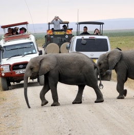 Enjoy Game viewing at this park in south Kenya