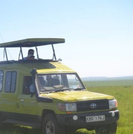 Sign Up for this African Wildlife Safari