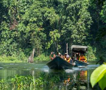 Royal Belum Rainforest Park Perak Malayasia