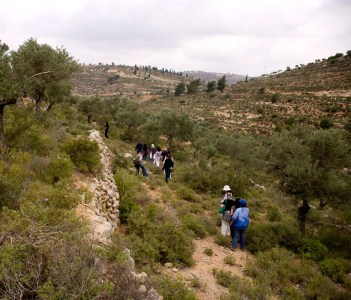 Ramallah Hills