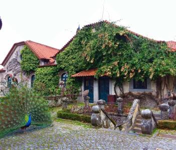 Vinho Verde wine estate