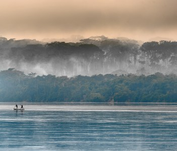 Morning fog on the African river Sangha in Congo