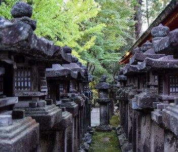 Nara Historical