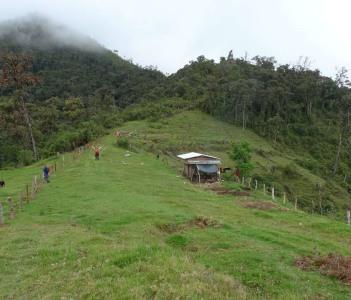 Gran Vilaya Landscape