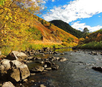 Tranquil scene next to the south platte river in fall in waterton canyon Littleton Colorado