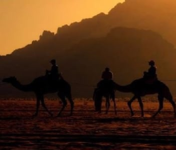 camel sunset caravan tour