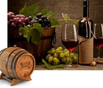 Stellenbosch Wine - 2nd Oldest town in S.A.