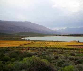 Hex Valley Autumn