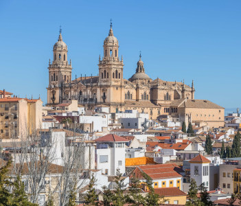 Roofs of the city and Jaen Cathedral in Jaen Andalusia Spain