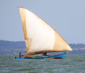 Dhow Sailing in Coastal Waters, Mahajanga, Madagascar