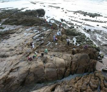 Coast of Asilah