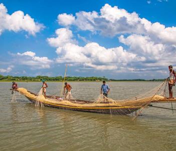 Fishers Harvesting Fish