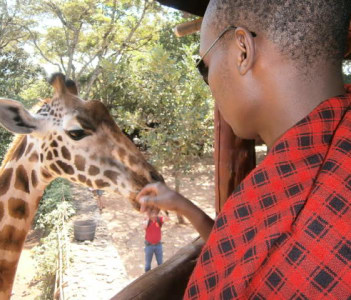 Giraffe Centre, Karen