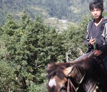 Himalayan Transport