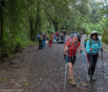 Day one climbing via Machame route