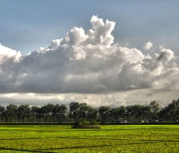 Nature view of Bogra