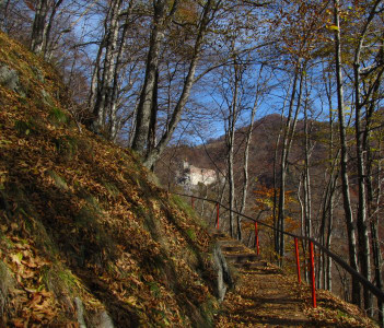 Towards Poienari Fortress