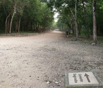 Paths & roads