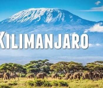 Ice of kilimanjaro