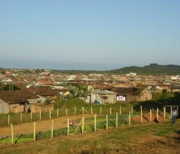 Horta Paranaguamirim
