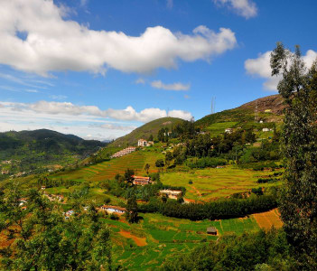 Landscape of Ooty. Ooty or Ootacamund is a popular hill station in India