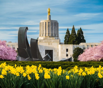 Oregon State Capitol Building during spring cherry blossom bloom, Salem Oregon, USA