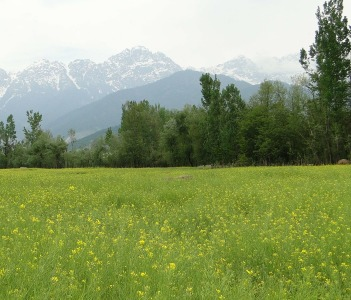 Pahalgam - Road from Anantnag to Pahalgam