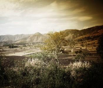 Dessie Valley