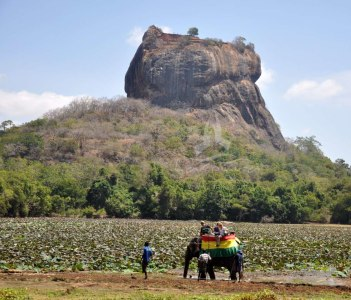 Elephant ride, Sigiriya