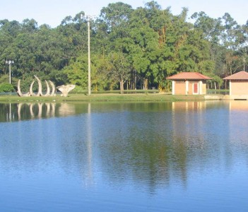 Lake in la Sabana Park