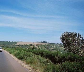 Nyeri Road