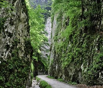 Zarnesti Gorges - Tours in Brasov
