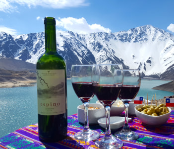 Wine tasting in the Andes Mountains